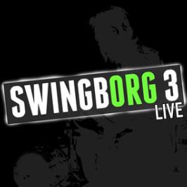 Swingborg3